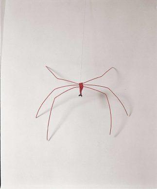 Alexander Calder, Spider, 1965, materiali di recupero e fil di ferro verniciati, Palazzo Collicola Arti Visive - Museo Carandente Spoleto. Copyright Fototeca Servizio Musei, archivi e biblioteche della Regione Umbria