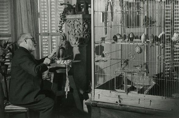 Brassaï (Gyula Halász), Henri Matisse, 1934 © bpk / RMN - Grand Palais / Brassaï