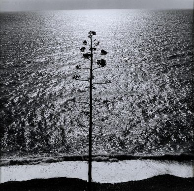 """Ugo Mulas (Pozzolengo (BS), 1928-Milano, 1973), Per """"Ossi di seppia"""", Monterosso, 1964. Stampa ai sali d'argento su carta baritata"""