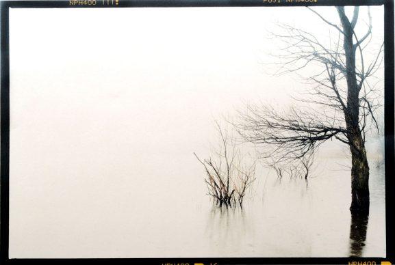 Bruna Biamino (Torino 1956), Lago di Avigliana, 1998. Stampa da negativo colore 6x9