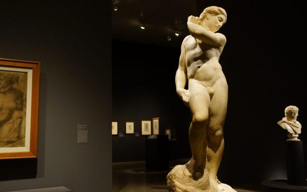 Michelangelo Buonarroti, Apollo-David. Photo by Regan Vercruysse, fonte Flickr