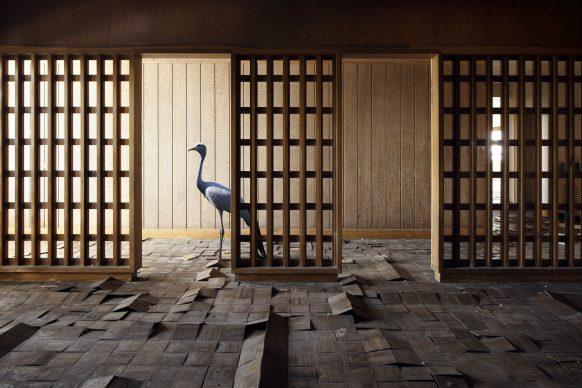 © HENK VAN RENSBERGEN, Haruki. Courtesy of Galerie DUMONTEIL (Shanghai, Paris _ New York)