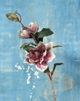 © JIANG ZHI, Faded Looks 11. Courtesy of Blindspot Gallery (Hong Kong)