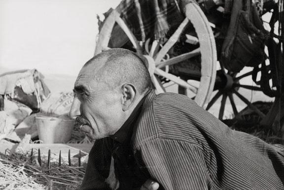 Giacomo Pozzi-Bellini, Uno spigolatore, Sicilia, 1940-1941 © Eredi Giacomo Pozzi Bellini