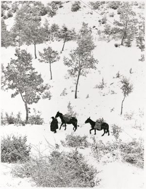 Fulvio Roiter, Norcia 1955 © Fondazione Fulvio Roiter