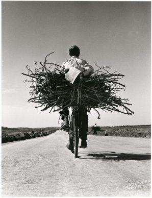 Fulvio Roiter, Sulla strada Gela - Niscemi, Sicilia 1953 © Fondazione Fulvio Roiter