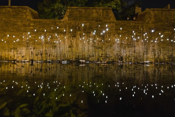 Passages Insolites 2018, Jean-Yves Vigneau: Water Flowers. Photo credit: Stéphane Bourgeois