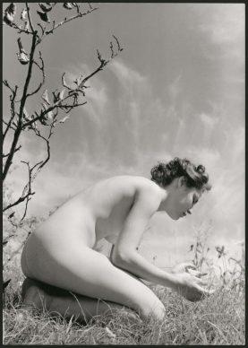 Fulvio Roiter, Senza titolo (nudo n. 5) © Archivio Storico Circolo Fotografico La Gondola Venezia