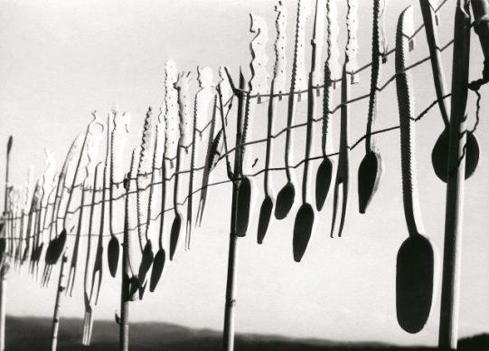 Fulvio Roiter, Senza titolo (mestoli) © Archivio Storico Circolo Fotografico La Gondola Venezia