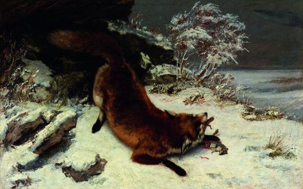 Gustave Courbet, Volpe nella neve, 1860, Dallas Museum of Art, Foundation for the Arts Collection, Mrs. John B. O'Hara Fund