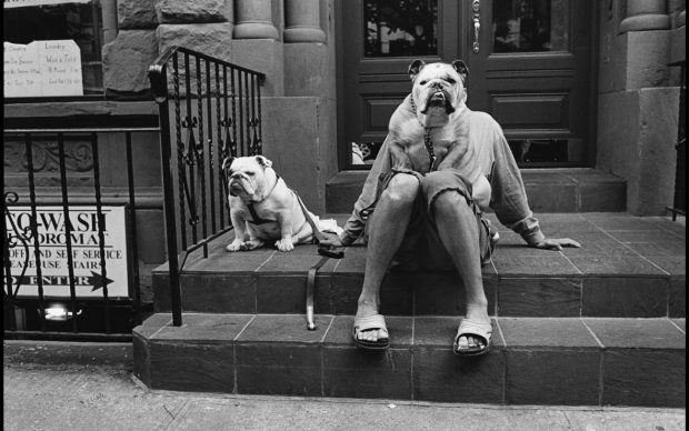 New York City, USA, 2000 © Elliot Erwitt - Magnum Photos