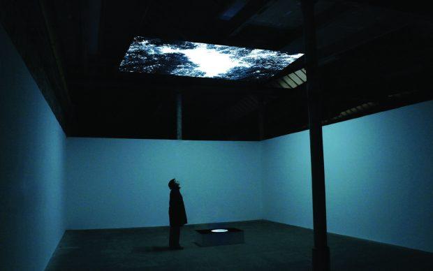 Youki Hirakawa, Vanished Tree, video installazione, 2012, Werkschau Spinnerei, Leipzig