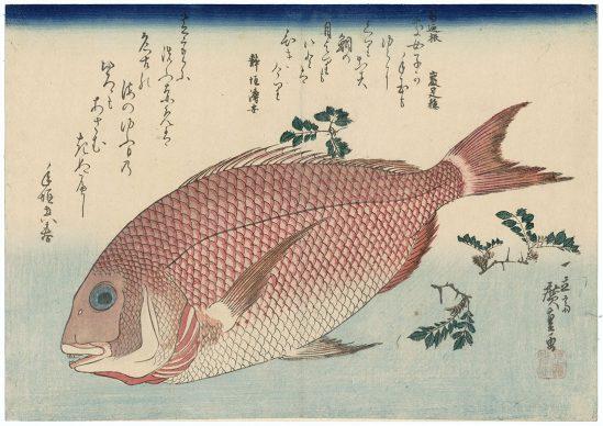 Utagawa Hiroshige, Pagro e pepe nero giapponese, 1832-33 circa, Museum of Fine Arts, Boston - William Sturgis Bigelow Collection
