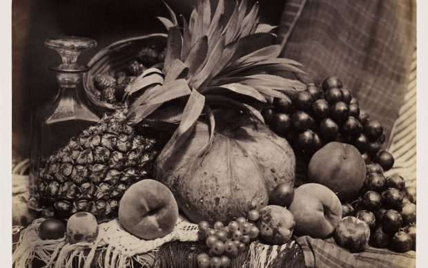 Roger Fenton, Still Life with Fruit and Decanter, 1860, Albumen print © The RPS Collection at the Victoria and Albert Museum, London