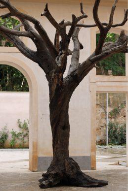 Ai Weiwei, Tree, 2016