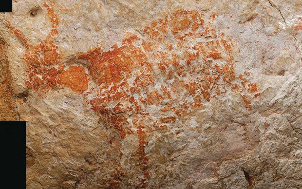 Pittura rupestre di un toro scoperta nella caverna di Lubang Jeriji Saléh Borneo, Indonesia, risalente a 40mila anni fa