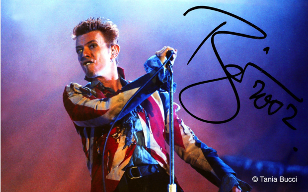 Tania Bucci, David Bowie
