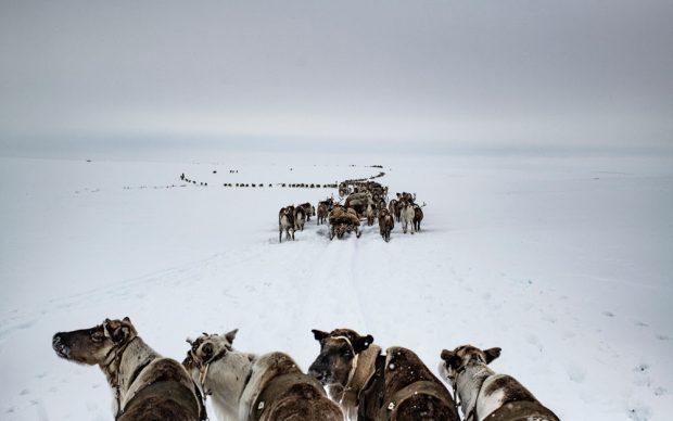 Yamal Peninsula, April 2018 © Yuri Kozyrev - NOOR for Fondation Carmignac