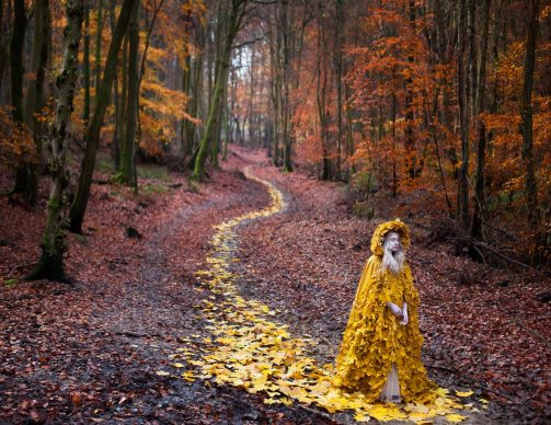Kirsty Mitchell, The Journey Home