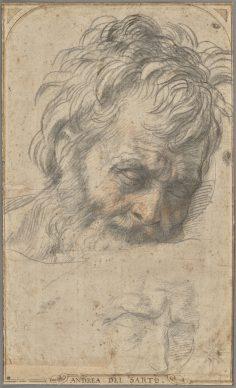 Andrea del Sarto, Study for the Head of Saint Joseph (recto); Two Studies of Legs (verso). Credit: The J. Paul Getty Museum, Los Angeles