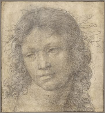 Lorenzo di Credi (Lorenzo d'Andrea d'Oderigo), The Head of a Young Boy Crowned with Laurel. Credit: The J. Paul Getty Museum, Los Angeles