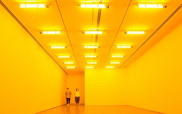 Olafur Eliasson 1997. Monofrequency lamps. Dimensions variable. © Olafur Eliasson