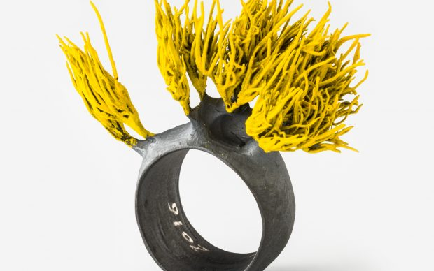 Paolo Marcolongo, Grass Ring Silver, 2016, Photo by Alberto Petrò