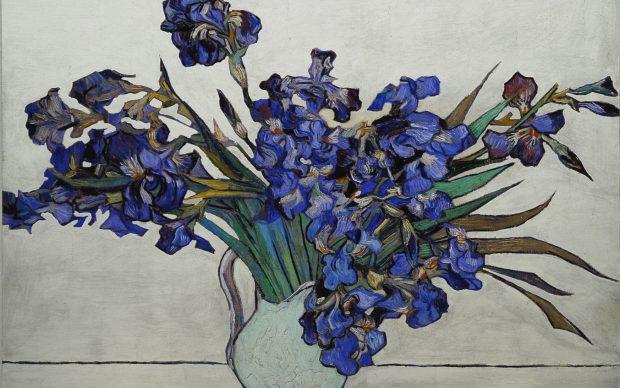 Stefano Arienti, Iris (da Van Gogh)