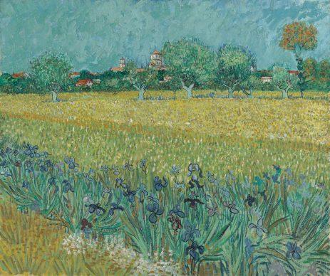 Vincent van Gogh, Field with Irises near Arles, 1888,  Van Gogh Museum, Amsterdam (Vincent van Gogh Foundation)