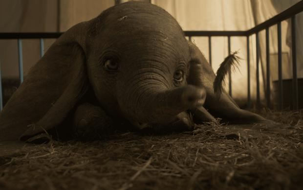 Dumbo, film live action, regia di Tim Burton