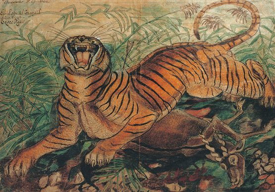 Antonio Ligabue, Tigre reale (Bengal tiger), Undated (1941), China and wax crayons on paper with a header by the San Lazzaro Psychiatric Hospital of Reggio Emilia, 36 x 50cm, Private collection ©