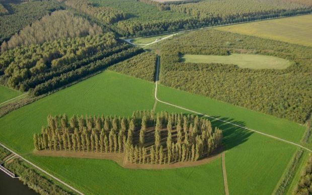 groene_kathedraal_land art_flevoland