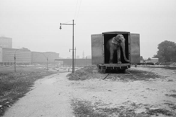 © Alberto Dubini, Circo Moira Orfei, area Porta Nuova, Garibaldi Milano, 1980