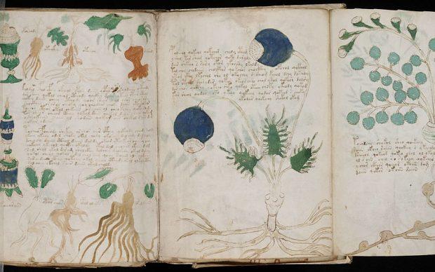 Pagine del cosiddetto Manoscritto Voynich, fonte Beinecke Rare Book & Manuscript Library, Yale University, via Wikipedia