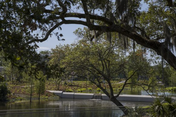 The Sydney and Walda Besthoff Sculpture Garden Expansion at the New Orleans Museum of Art, Weir. Photo Credit: Richard Sexton