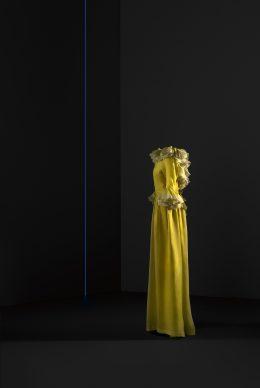 Vestido de noche, Organza de seda. Colección de Dominique Sirop, París