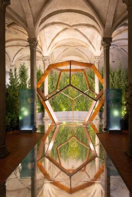 """Mostra """"La Botanica di Leonardo. Per una nuova scienza tra arte e natura"""". Photo courtesy Aboca, Comune di Firenze e MUS.E"""