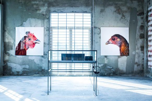 Labiomista © Koen Vanmechelen, 2013. Photo by Jian Tao