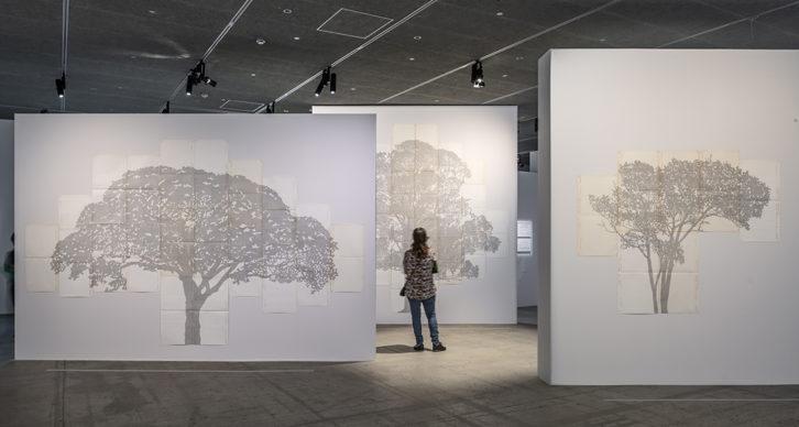 Vista dell'allestimento della mostra Nous Les Arbres. Parigi, Fondation Cartier pour l'art contemporain. Photo Luc Boegly