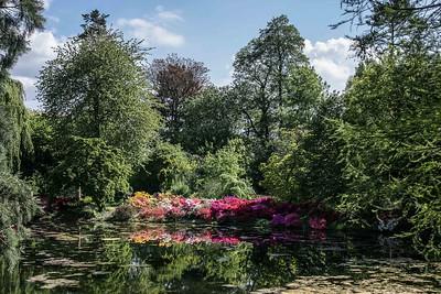 Ghent University Botanical Garden, Gent - Fiandre. Photo by Bas Bogaerts © Stad Gent-Dienst Toerisme. Foto via flickr.com/photos/visit_gent