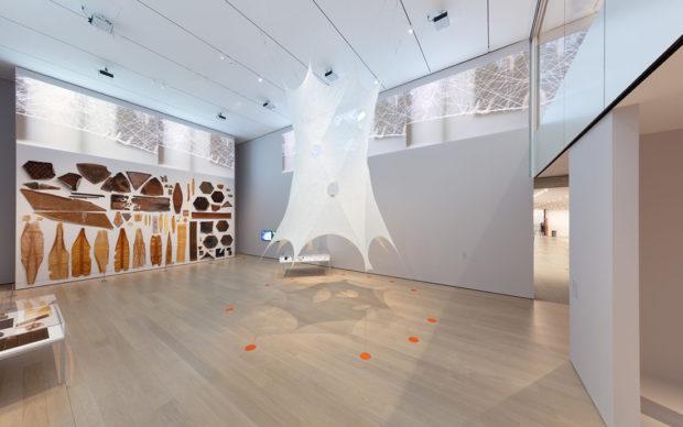 Neri Oxman Museum of Modern Art Photo Denis Doorly