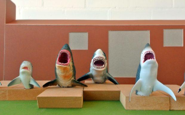 A Chorus Line. Jaimie Shorten, Sharks!
