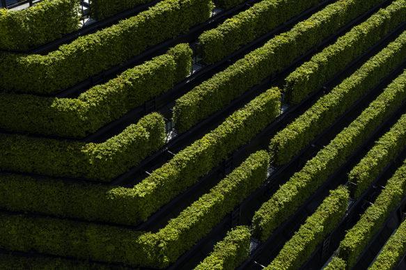 Photo credits © ingenhoven architects / HGEsch