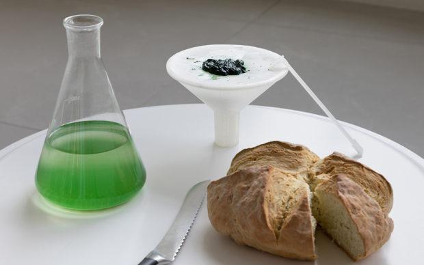 ecoLogicStudio, BioBombola, Spirulina bread © NAARO