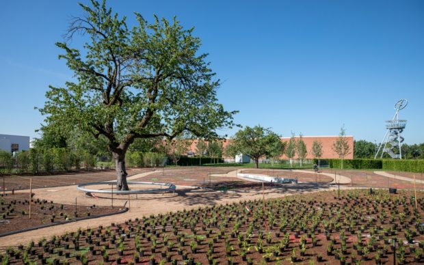 Vitra Piet Oudolf Garten, courtesy Vitra Campus