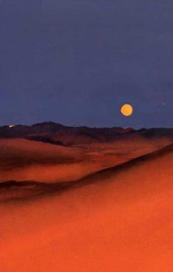 """La copertina di Manuele Fior per il libro """"La luna e i falò"""" di Cesare Pavese (Einaudi). Courtesy l'artista"""