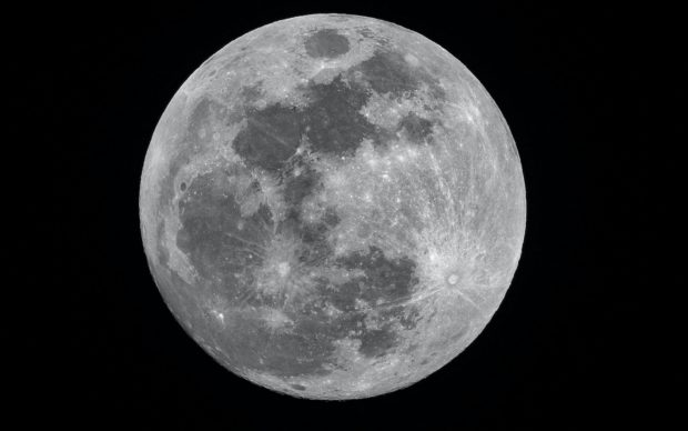 Luna, photo byMike PetruccionUnsplash