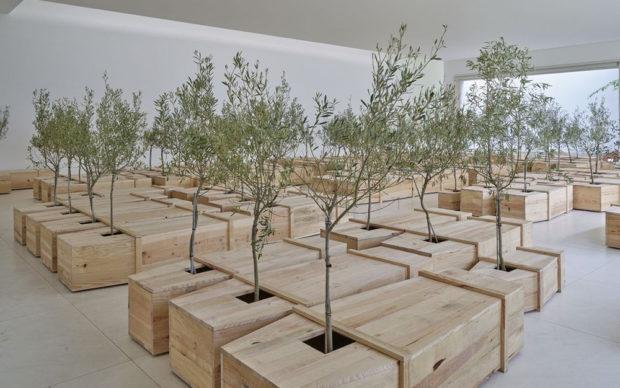 Yoko Ono: TheLearning Garden of Freedom, exhibitionn view at Serralves Museum of Contemporary Art di Porto, Portogallo. Photo© Filipe Braga
