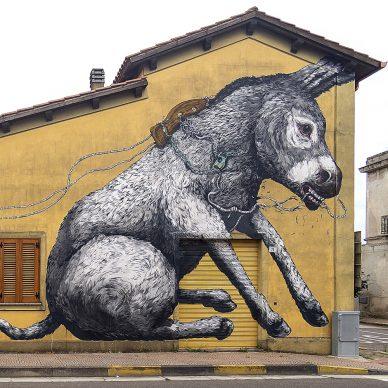 Muri di Sardegna. Luoghi e opere della Street art. Dario Flaccovio Editore. Foto credit Massimiliano Frau