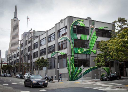 San Francisco, California. Opera e foto di Mona Caron